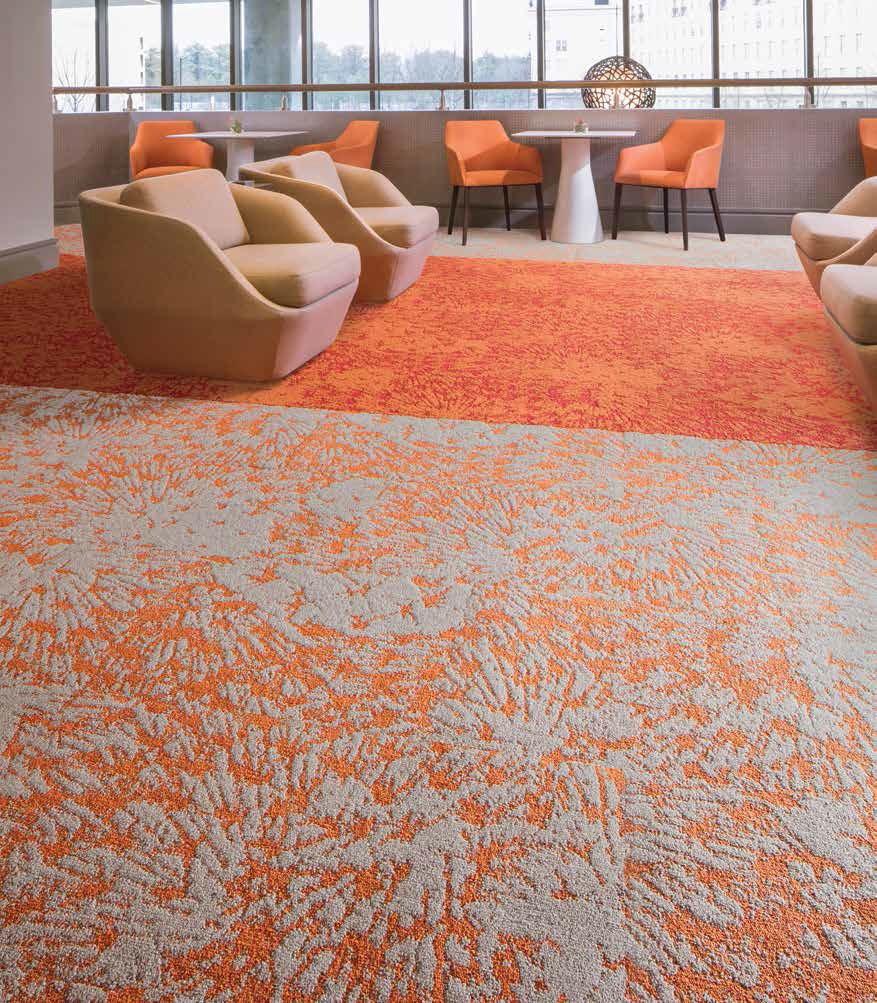 Intrinsic Carpet Collection Brochure-7