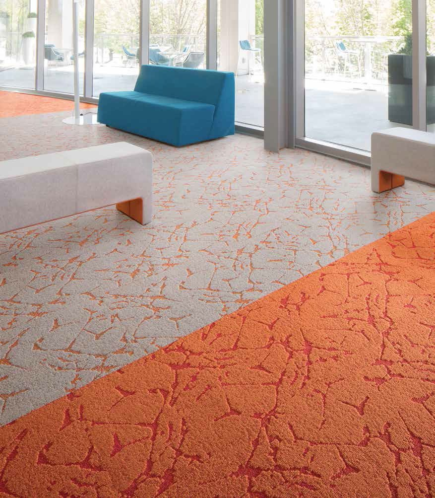 Intrinsic Carpet Collection Brochure-5