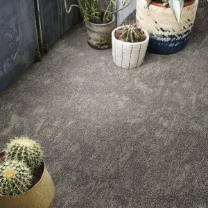 72_dpi_4B1F_CloseUp_carpet_Desert_770_BROWN_2